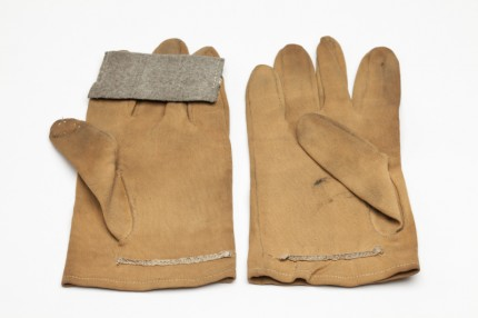 Image 10_Pricker gloves